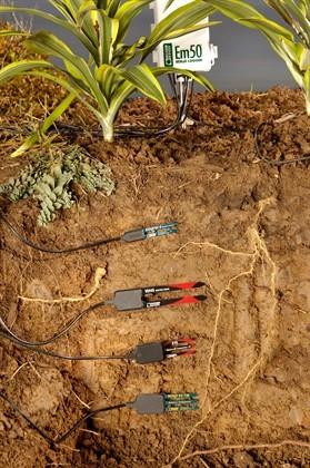 Soil Moisture Sensors