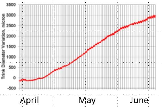 vineyard growth data