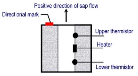 TDP Sap Flow Sensor