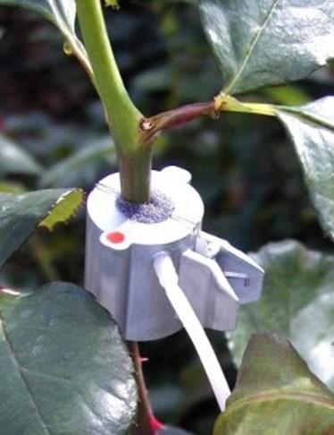 Sapflow Sensor