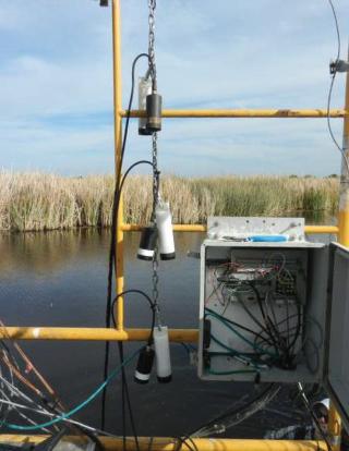 Dissolved CO2 Sensor