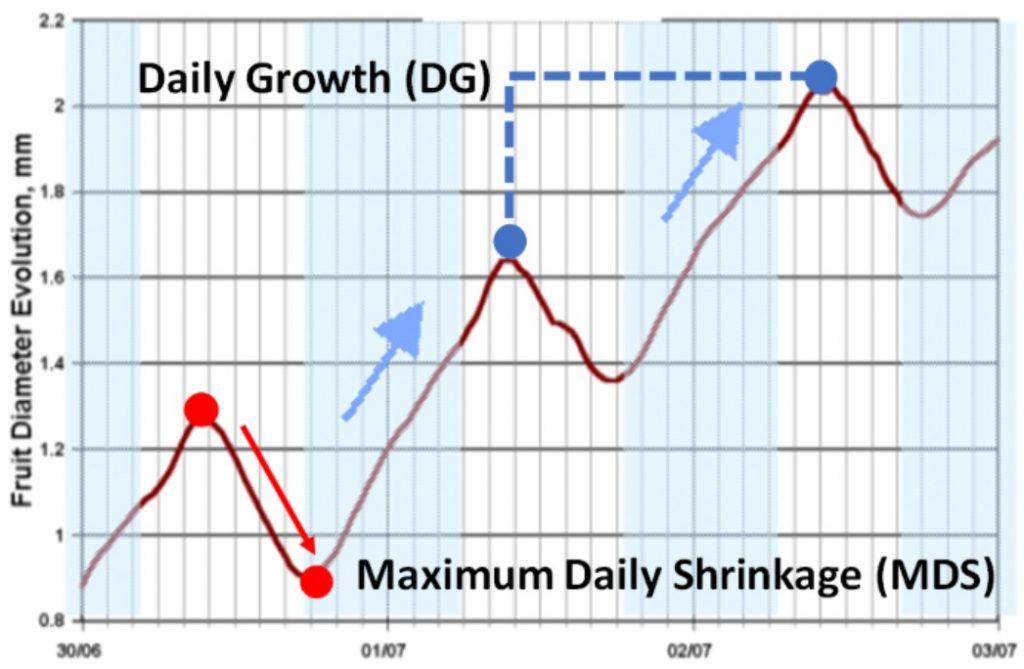 Maximum Daily Shrinkage MDS