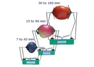 FI Series of Fruit Dendrometers