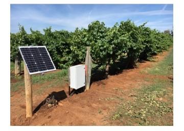 Edaphic Vineyard Installation Web