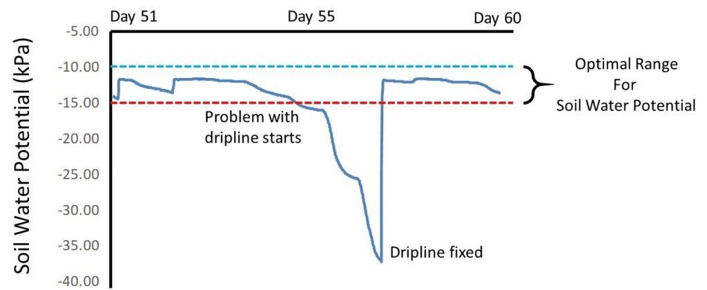 soil water potential measurements