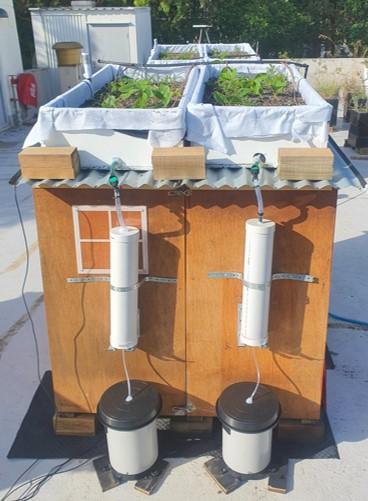 green roof water balance